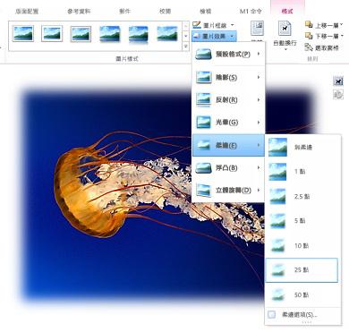 使用 [圖片效果] 加入陰影、柔邊、浮凸或其他視覺效果。