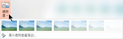 [透明度] 功能表包含7個可供選擇的不透明度,加上一個可讓您選擇自訂不透明度的按鈕。