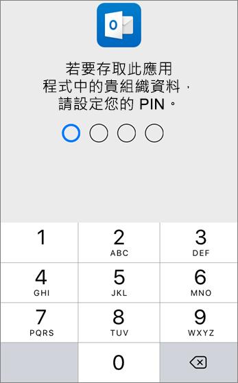 設定 PIN 以存取貴組織的資料
