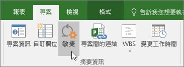 敏捷式] 按鈕,在專案] 功能區]、 [專案] 索引標籤、 [屬性] 區段的螢幕擷取畫面