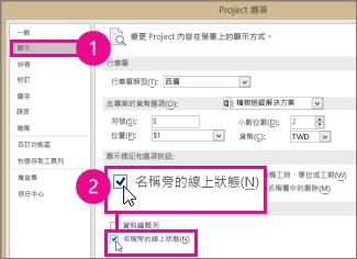 專案選項,顯示索引標籤