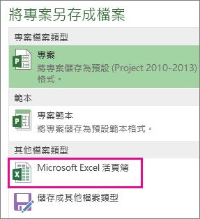 將專案檔案另存為 Microsoft Excel 活頁簿