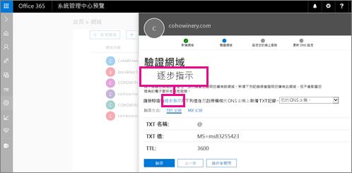 依照 [驗證] 頁面上的指示來新增 TXT 記錄至網域 DNS 主機