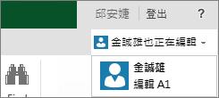 Excel Online 中的多個作者