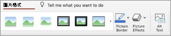 Mac 版 PowerPoint 中之影像功能區上的 [替代文字] 按鈕。