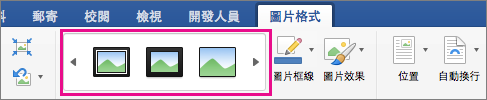 在 [圖片格式] 索引標籤上醒目提示圖片框線樣式庫。