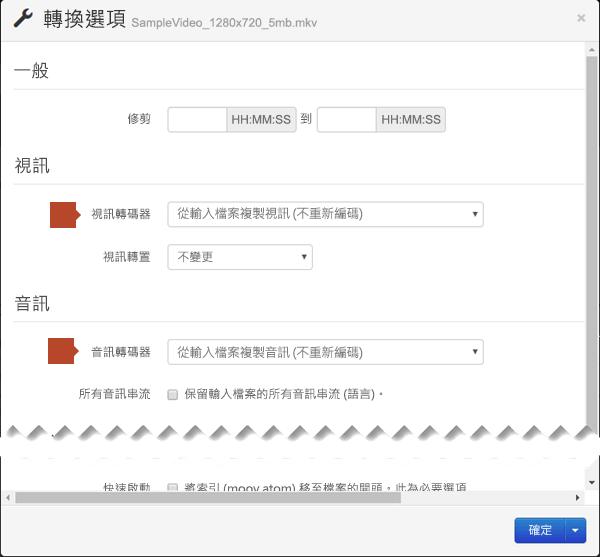[轉換選項] 對話方塊包含視訊編碼和音訊轉碼器選項