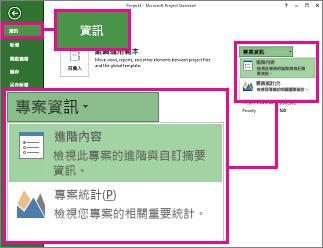 [專案資訊] 功能表,其中 [進階摘要資訊] 已醒目提示
