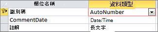 在 Access 資料表 [設計檢視] 中自動編號主索引鍵標示為識別碼