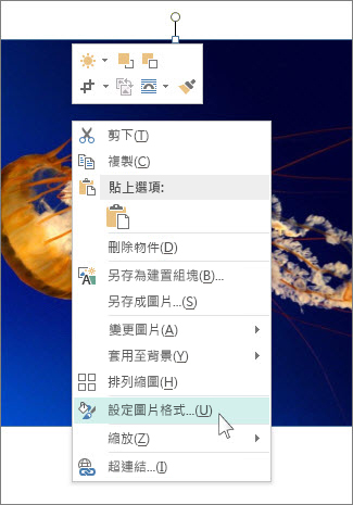 Publisher 中 [設定圖片格式] 選項的螢幕擷取畫面。