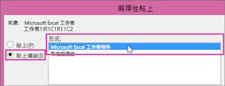 選擇 Microsoft Excel