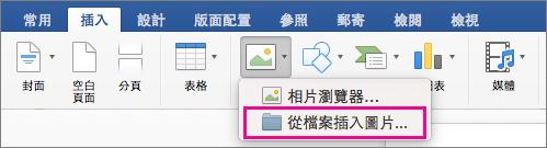 [插入] 索引標籤上醒目提示 [從檔案插入圖片]。