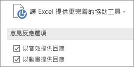 Excel [輕鬆存取] 設定的部分畫面