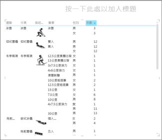 針對年數排序 Excel 矩陣