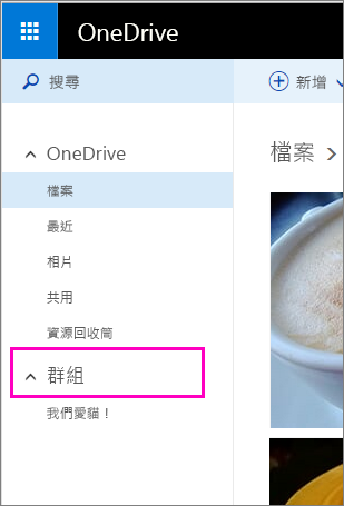 OneDrive 中的 Windows Live 群組