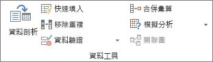 [資料] 索引標籤上的 [資料工具] 群組