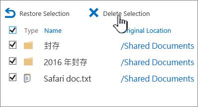 SharePoint 2016 第 2 層級資源回收筒的所有選取的項目和醒目提示的刪除