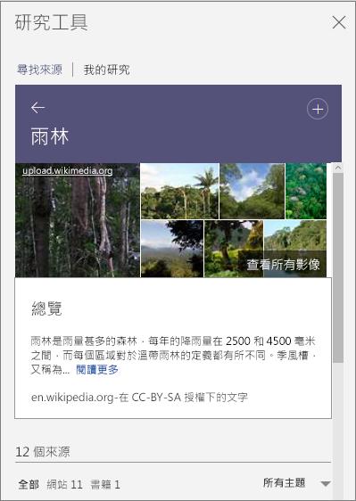 顯示雨林搜尋結果的 [研究工具] 窗格