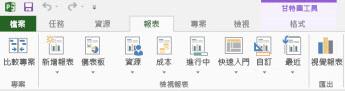Project 2013 報表中的 [報表] 索引標籤