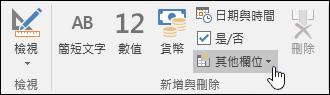 [欄位] 功能區索引標籤上 [新增與刪除] 群組的螢幕擷取畫面。